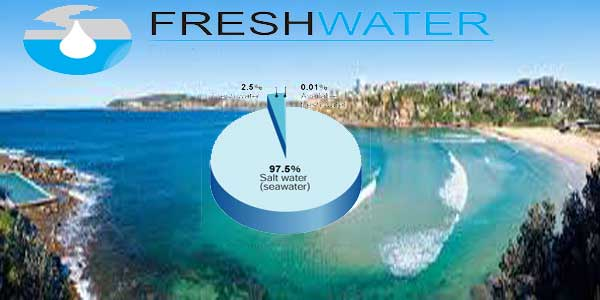 how many percentage of pure water is on earth
