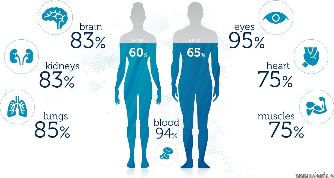 percentage of water in human body weight
