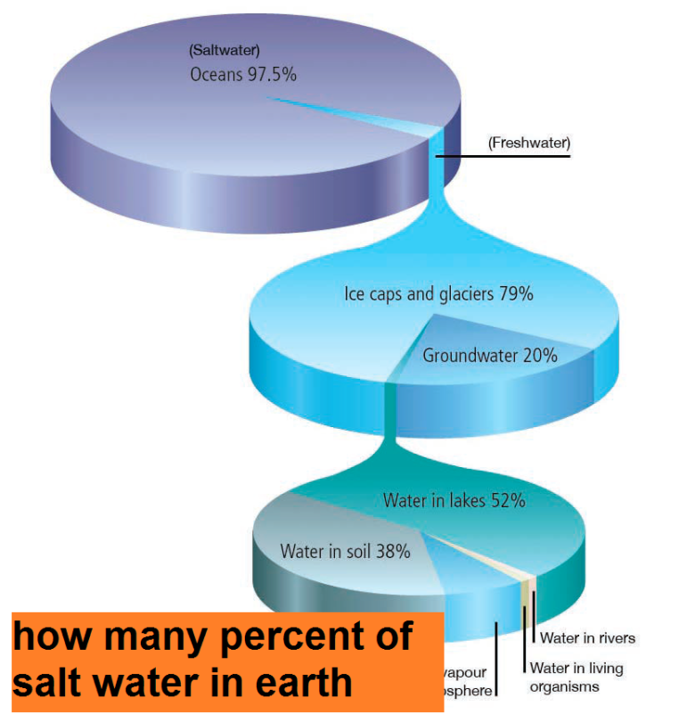 how many percent of salt water in earth