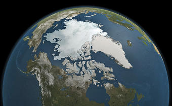 what percentage of water on earth is ice
