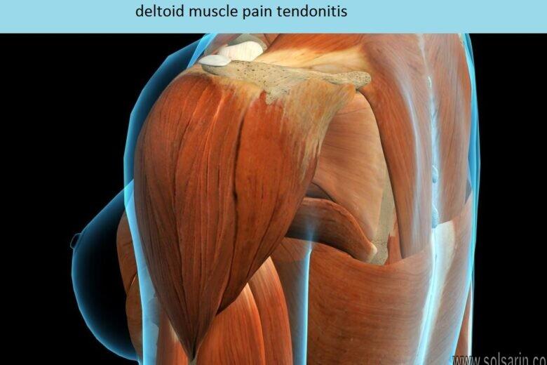 deltoid muscle pain tendonitis