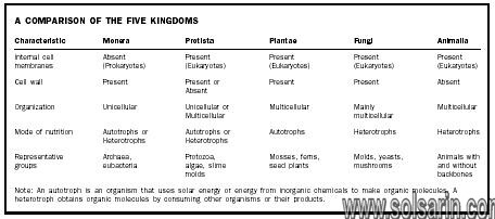 what kingdoms are unicellular?