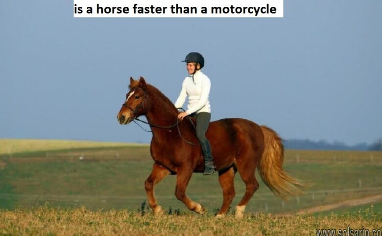 is a horse faster than a motorcycle