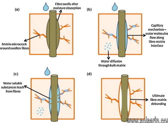 porous water absorbing mass of fibers
