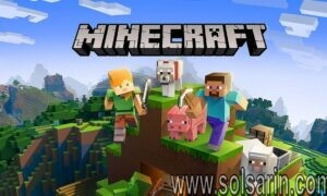 how many people play minecraft